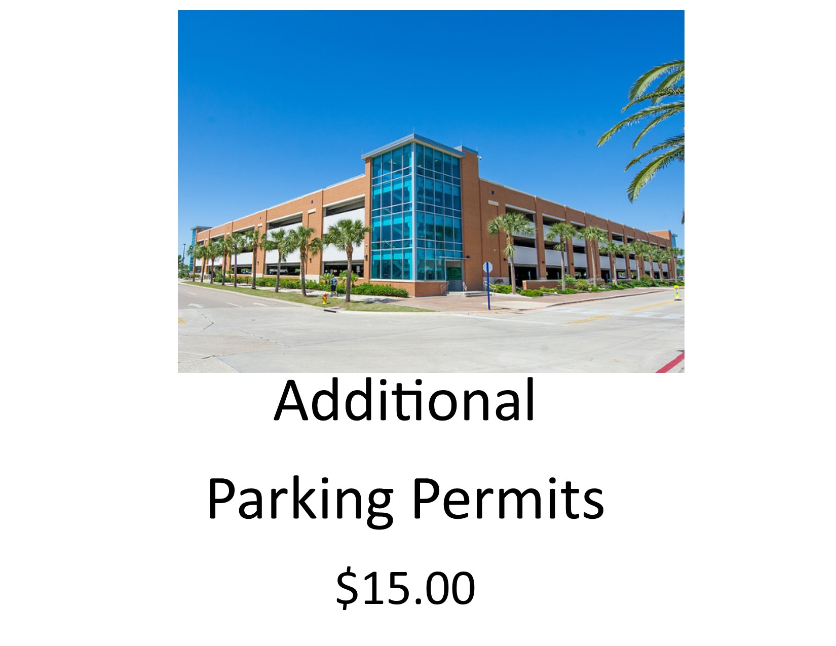 Additional Parking Permits